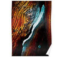 Firewood I Poster