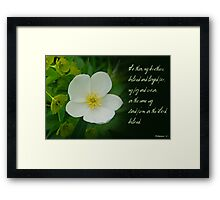 Stand firm in the Lord ~ Philippians 4:1 Framed Print