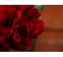 Intimate red. Photographic Print