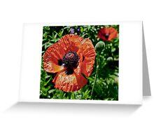 Orange Flower Power Greeting Card