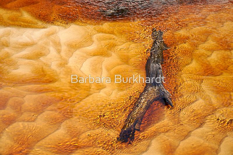 Creek to Sea at Woorim Beach by Barbara Burkhardt