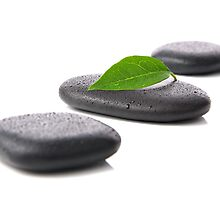 Zen basalt stones with leaf  by Pics4merch