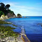 Lee bay in devon by Michael Schmid