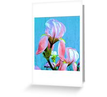A Touch of Color ! Greeting Card