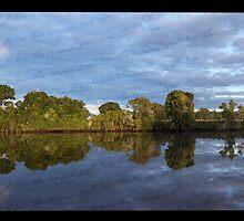Dawson River Bridge, Cundletown by Jason Allan