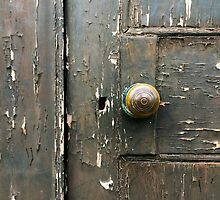 Locked Door by Ludwig Wagner