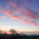 Sunrise over County Kilkenny, Ireland by Andrew Jones