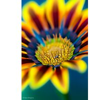 Everyone smiles as you drift past the flowers,-that grow so incredibly high Photographic Print
