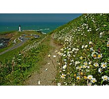 Summertime At Yaquina Head Photographic Print