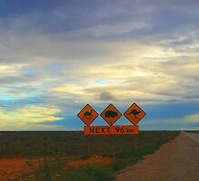 Watch out for wildlife, Nullarbor panorama by BigAndRed