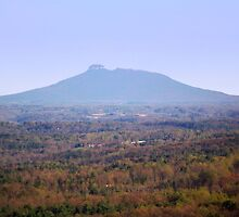 Pilot Mountain As Seen From Fancy Gap by James Brotherton
