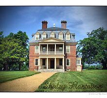 Shirley Plantation by Florence Womacks