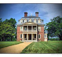 Shirley Plantation by Florence Womacks