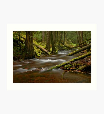 Panther Creek Landscape Art Print