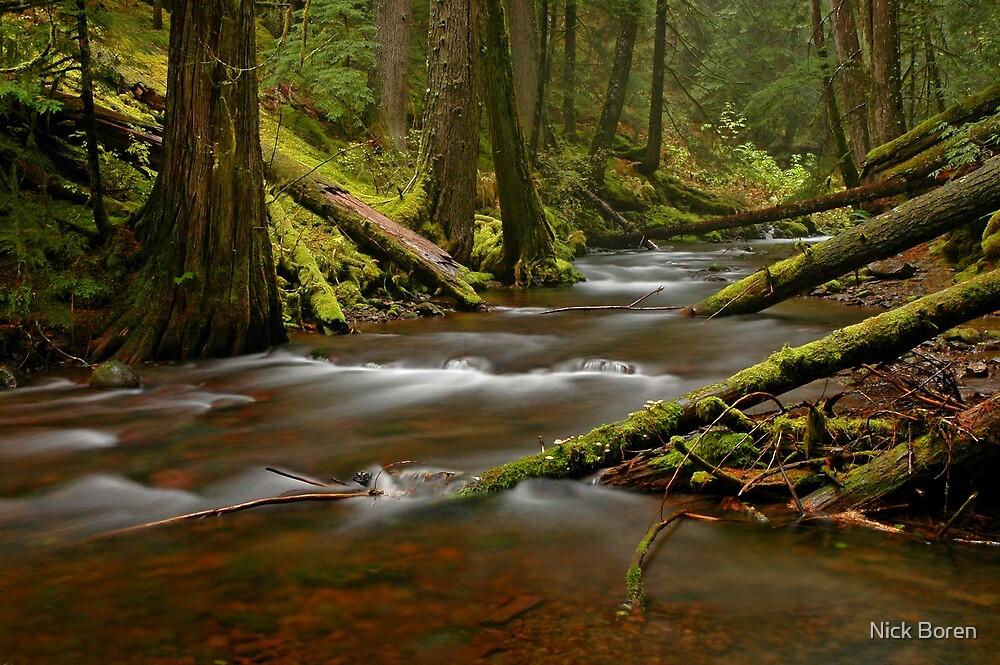 Panther Creek Landscape by Nick Boren