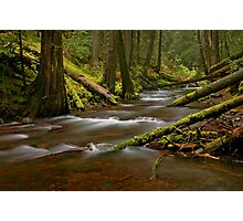 Panther Creek Landscape Photographic Print