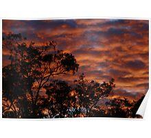 'Autumns last sunset' - Jarrahdale WA Poster