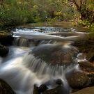 Downstream by John Morton
