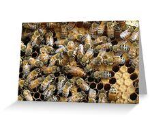 Queen Bee Greeting Card