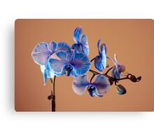 Blue Azure Canvas Print