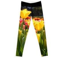 Yellow Tulip Field Leggings