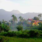 Rural Bogor, Indonesia by Tim Coleman