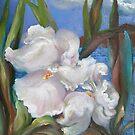 White Iris by Barbara Sparhawk