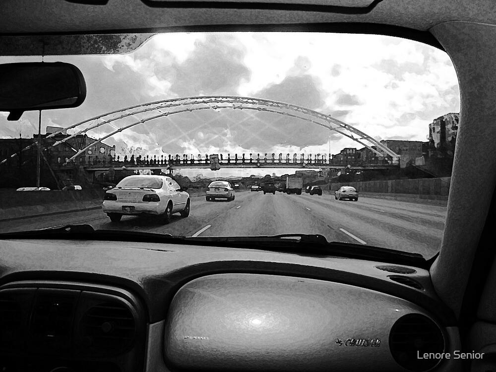 Denver from the Inside by Lenore Senior