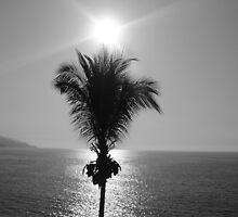 Paradise by Laynec44