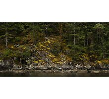 Mossy Cliff - Sechelt Inlet, British Columbia Photographic Print