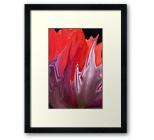 Abstract Poppy  Framed Print