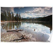 Beaver lake II Poster
