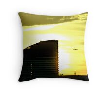 Speed of Light Throw Pillow