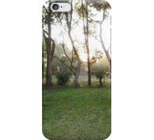 Sunrise through the Mist on Stokes' Farm - Kirkstall, Vic iPhone Case/Skin