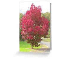 Autumn in Lobethal Greeting Card