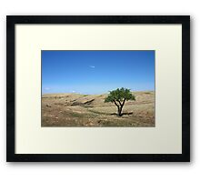 Beauty Stands Alone Framed Print