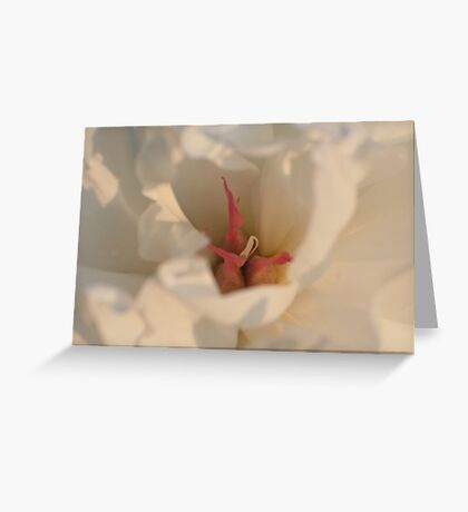 Centering on Peonies Greeting Card