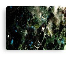 Timey-wimey Canvas Print
