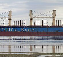 Darling River - Bulk Carrier by Cecily McCarthy