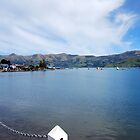 Akaroa Harbour by Adam Le Good