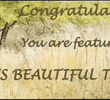 Trees Beautiful Trees (banner challenge) by Rene Hales