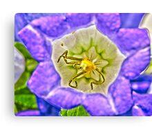 Purple Flower Macro - HDR Canvas Print