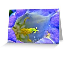 Botanically Explicit - Flower Macro Greeting Card