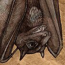 The Laughing  Bat by Lynnette Shelley