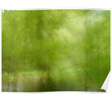 Autumn Woodland, Riverside Poster