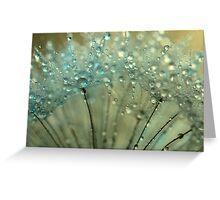 Sparkling Dandelion Drops Greeting Card