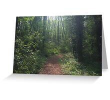 Woodland Path ~ Brixham, South Devon Greeting Card