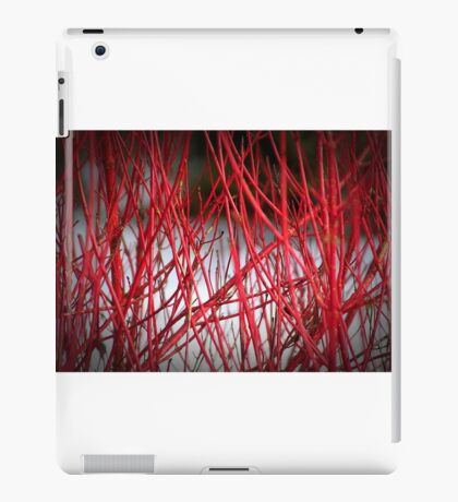 Winter colour iPad Case/Skin