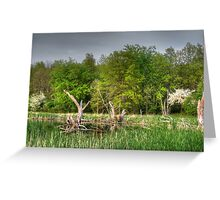 Dead Wood Swamp Before Storm Greeting Card