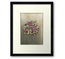 Keepsake Framed Print